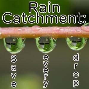 Rain Catchment System