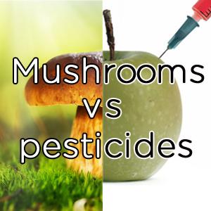 Mushrooms vs Pesticides